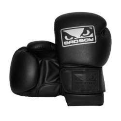 BAD BOY - Evolution Gloves